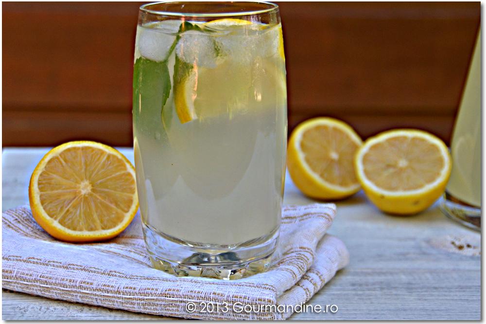 Limonadă de casă
